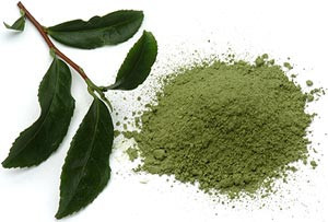 green tea and anti aging solutions